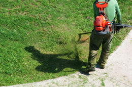 Landscaping services - Commercial Property Maintenance Services